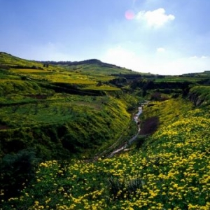 Countryside - (c) Malta Tourism Authority