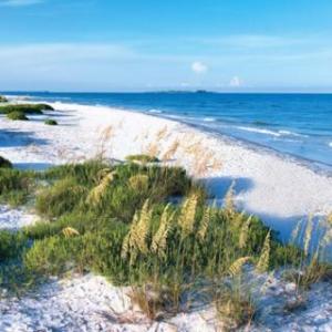 (c) St. Petersburg/Clearwater Area Convention & Visitors Bureau