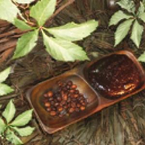 Massage au chocolat , Tentation D'Afrique