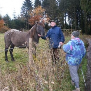le docteur Bauvir fait semblant de parler au cheval; en fait, il fait une halte aussi!