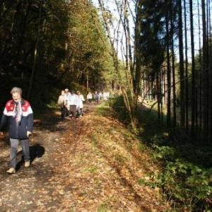 voie du tram entre l'Ermitage et le moulin Bastin