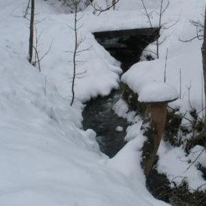 Le ruisseau de Randoux, qui alimentait la tannerie Lemaire