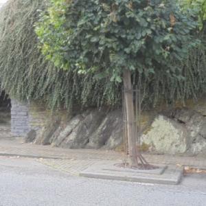 Rochers, interieur de la ville.