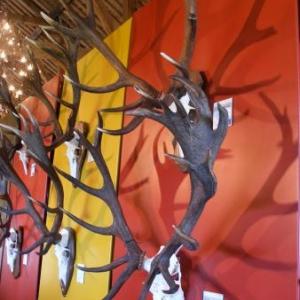 Les deux perches de gauche se terminent par des chandeliers. Le parfait chandelier est de trois branches, comme celui du dessous.