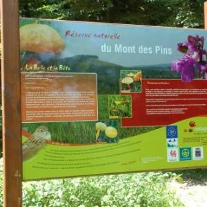 """Randonnée gourmande """"al cwene des bwes"""" - Pays d'Ourthe & Aisne"""