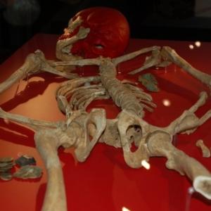 Squelette d'un soldat de 1815