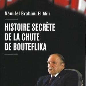 Histoire secrète de la chute de Bouteflika. Par Naoufel Brahimi El Mili