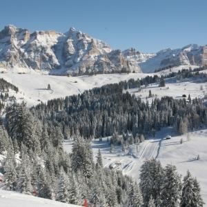 alta_badia_c_idm_sudtirol-alto_adige_freddy_planinschek