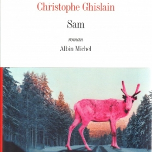 SAM, de Christophe GHISLAIN aux éditions Albin Michel