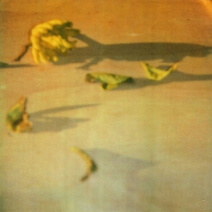 Cy Twombly Lemon, Gaeta Dryprint on cardboard 2008 43,1 x 27,9 cm © Schirmer/Mosel Verlag - Nicola Del Roscio Foundation