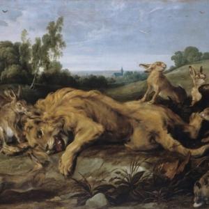 Frans Snyders (1579-1657) et Jan Wildens (1585/1586 – 1678),  Le lion mort, © Cliché L. Gauthier