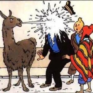 (c) Herge/Moulinsart