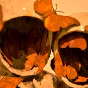 """Papillons à l honneur (c) Pierre Sgamma / Photo : """"Skit"""""""