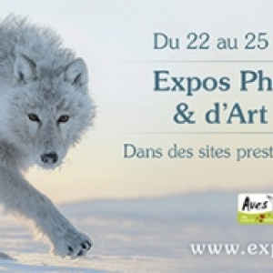 « Photos Nature et Art Animalier », à Namur, du 23 au 25/09