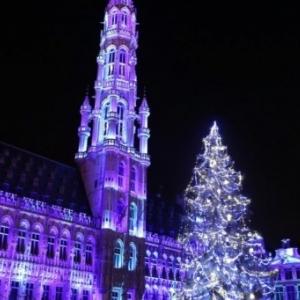 Les lumieres dansantes des aurores boreales (c) Ville de Bruxelles