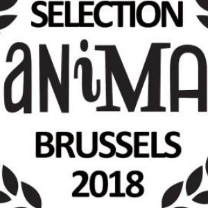 """37ème Festival """"Anima"""", à """"Flagey"""", du 09 au 18 Février"""