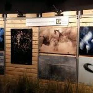 """Expos Photos, a l """"Acinapolis"""""""