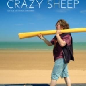 """""""Crazy Sheep"""""""