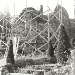 Chateau des comtes de Salm