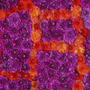 Belle mosaique de couleurs-1188