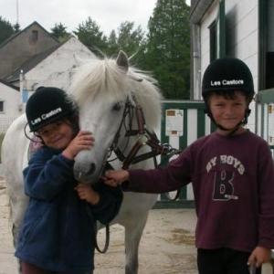 Aiseau: Stage d'équitation à la Ferme des Castors.