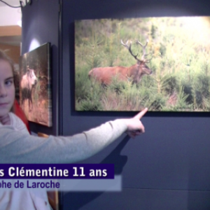 video, exposition Grandeur Nature