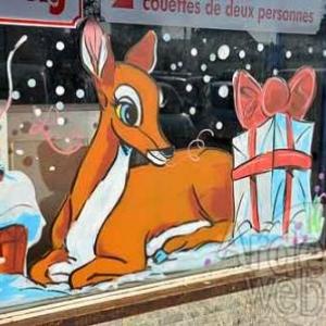vitrine de Noel - photo 4764