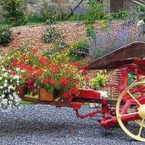 Concours entente florale europe - 1309