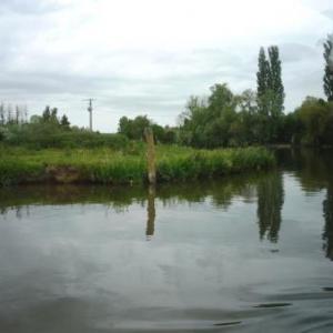Salperwick : Promenade dans le Marais Audomarois ( 3400 ha et 160 kms de rivieres )