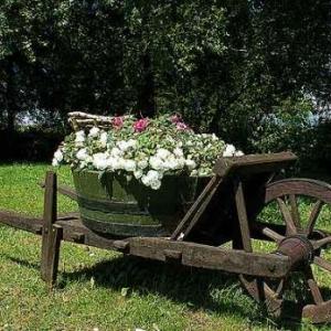 Concours entente florale europe - 3376