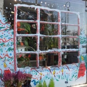 vitrine de NOEL Paris