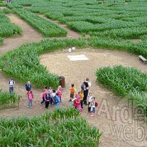 Le Labyrinthe de Barvaux avec les Mayas