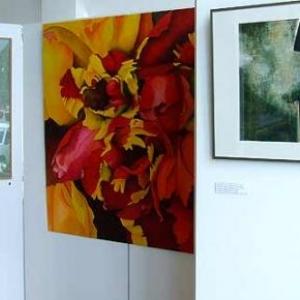 Galerie Alta falesia: exposition-3149