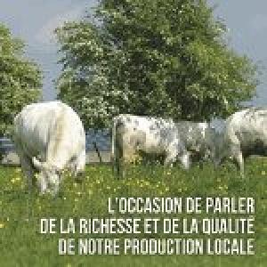 Blanc Bleu Belge, Oscar wallon