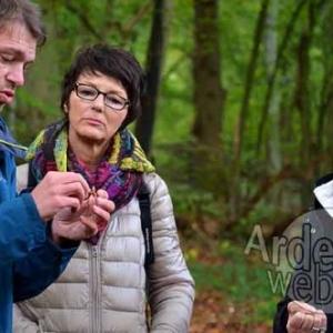 Promenade champignons avec BARNABE EK--1063