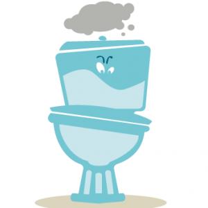 Les toilettes ne sont pas des egouts