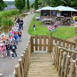 Attraction touristique OVive Dochamps - 7344