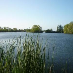 Ardres : le lac