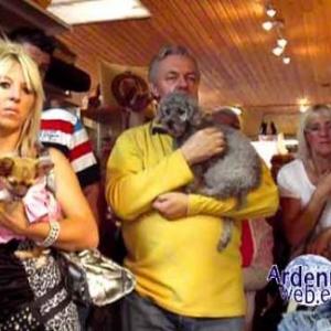 le plus beau chien du monde - video 03