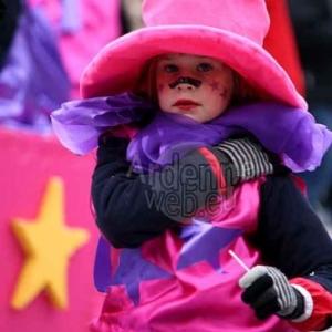 Carnaval de La Roche 2015 - 4575