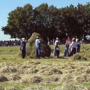 Fete du Cheval 2007-video 24