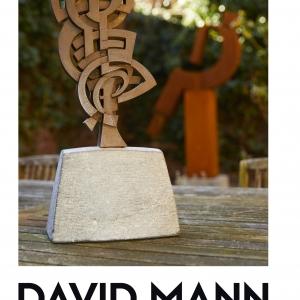 l'artiste et joaillier  liégeois David Mann.