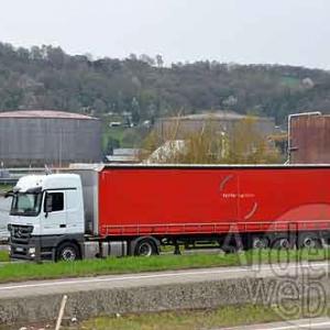 Palifor Logistics-7435