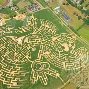 Labyrinthe Pays Schtroumpf-1125