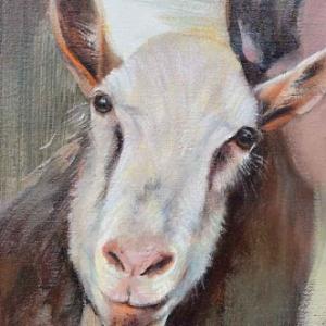Stupid Goat. Peinture de Marie-Elise