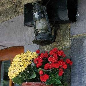 Concours entente florale europe - 3357