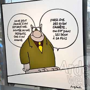 Philippe Geluk expose le Chat-6485