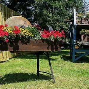 Concours entente florale europe - 3368