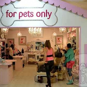 For pets only-6610
