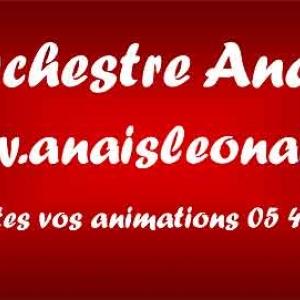 orchestre musette anais